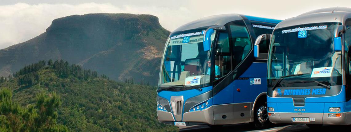 Autobuses-Mesa-1